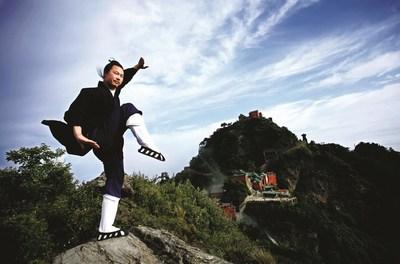 Wudang Wushu (Wudang martial arts)