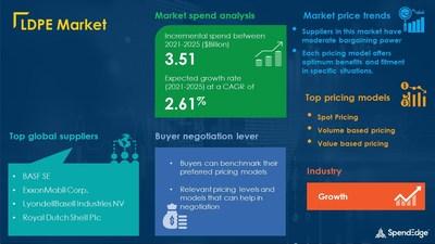 LDPE Market Procurement Research Report